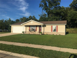 Photo of 24 Parkway Dr., Troy, MO 63379-2937 (MLS # 19061386)