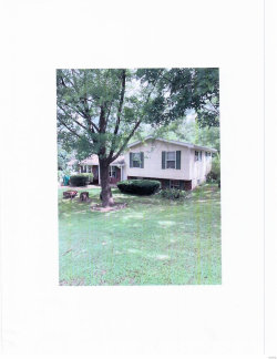 Photo of 929 Holly Drive Drive, Imperial, MO 63052 (MLS # 19061535)