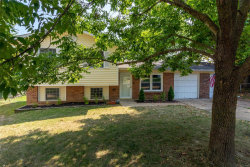 Photo of 2306 Lee Drive, Arnold, MO 63010-1607 (MLS # 19062134)