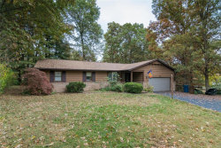 Photo of 501 Pike Lane, Troy, IL 62294 (MLS # 19063056)