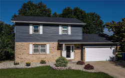 Photo of 1004 Andra Drive, Maryville, IL 62062-6408 (MLS # 19065968)