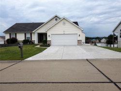 Photo of 1029 Meadow Grove, House Springs, MO 63051-4329 (MLS # 19066396)
