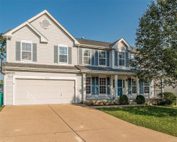 Photo of 6116 Misty Meadow Drive, House Springs, MO 63051-4324 (MLS # 19069397)