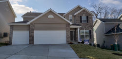 Photo of 761 Winding Bluffs Drive, Fenton, MO 63026 (MLS # 19072135)