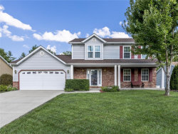 Photo of 1032 Meadow Lake Drive, Maryville, IL 62062-6679 (MLS # 19072654)
