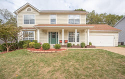 Photo of 1534 Atlantic Crossing Drive, Fenton, MO 63026-6920 (MLS # 19072874)