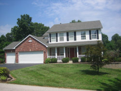 Photo of 54 Christina Drive, Pevely, MO 63070-1642 (MLS # 19073574)