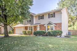 Photo of 969 Lakewood Court, Troy, IL 62294-6229 (MLS # 19074805)