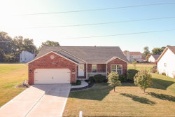 Photo of 2528 Liberty Dr, Maryville, IL 62062 (MLS # 19075385)
