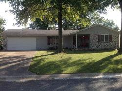 Photo of 828 Wildwood Drive, Bethalto, IL 62010-1134 (MLS # 19076836)