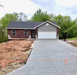 Photo of 4346 Woodridge Drive, Hillsboro, MO 63050-2608 (MLS # 19078603)