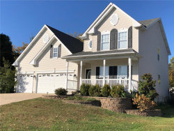 Photo of 19 Ridge Place, Imperial, MO 63052-2466 (MLS # 19078791)
