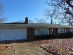 Photo of 705 Carl Street, Collinsville, IL 62234 (MLS # 19079831)