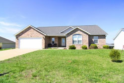 Photo of 1337 Holly Drive, Cape Girardeau, MO 63701 (MLS # 19083263)