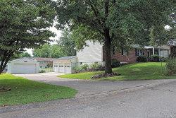 Photo of 207 South Forester Drive, Cape Girardeau, MO 63701-8529 (MLS # 19083865)