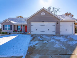Photo of 6096 Brookview Heights Drive, Imperial, MO 63052-2955 (MLS # 19084273)