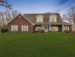 Photo of 24372 Parade Drive, Lebanon, MO 65536-9466 (MLS # 19084291)