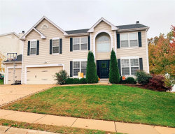 Photo of 1024 Scenic Oaks Court, Imperial, MO 63052-3457 (MLS # 19084303)