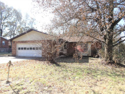 Photo of 3803 State Hwy W, Cape Girardeau, MO 63701-9185 (MLS # 19085191)