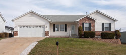 Photo of 1378 South Main Street, Troy, MO 63379-2541 (MLS # 19085753)