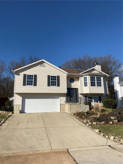 Photo of 4269 Northwest Point, House Springs, MO 63051-4303 (MLS # 19086479)