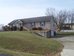 Photo of 1195 Tampico Drive, Edwardsville, IL 62025 (MLS # 19089124)