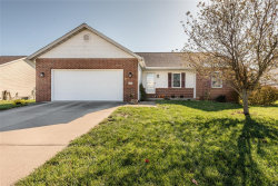 Photo of 132 Shadowbrooke Drive, Troy, IL 62294-3620 (MLS # 19089337)