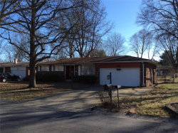 Photo of 111 Springdale Place, Wood River, IL 62095-4052 (MLS # 19091251)
