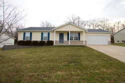 Photo of 264 Parkway Drive, Troy, MO 63379 (MLS # 20000626)
