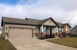 Photo of 63 Oxford Pl, Troy, MO 63379-3991 (MLS # 20002640)
