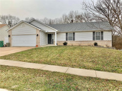 Photo of 3862 Bedford Pointe Drive, Wentzville, MO 63385-2967 (MLS # 20004044)