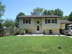 Photo of 4140 East Lake Drive, Granite City, IL 62040-3001 (MLS # 20005560)