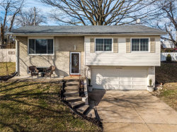 Photo of 619 Robin Drive, Arnold, MO 63010-1633 (MLS # 20006868)