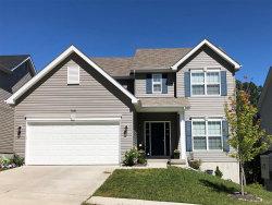 Photo of 17423 Wyman Ridge Drive, Eureka, MO 63025 (MLS # 20007038)