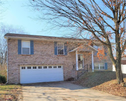 Photo of 5832 Blackberry, Imperial, MO 63052-2147 (MLS # 20009959)