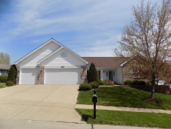 Photo of 5207 South Glen Court, St Louis, MO 63128-3626 (MLS # 20010188)