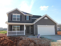 Photo of 3127 Willow Point Drive, Imperial, MO 63052 (MLS # 20010290)