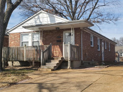 Photo of 3933 Germania, St Louis, MO 63116-3028 (MLS # 20011189)