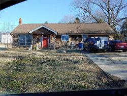 Photo of 5506 Sunset Drive, Hillsboro, MO 63050-1814 (MLS # 20014780)