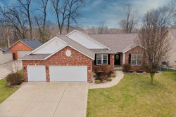 Photo of 248 Harbor Mill Drive, Troy, IL 62294-3239 (MLS # 20015831)