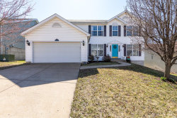 Photo of 1124 Oak Hollow Drive, Imperial, MO 63052-3455 (MLS # 20016272)