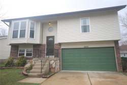 Photo of 2409 Golden Gate Drive, Imperial, MO 63052-2082 (MLS # 20016616)