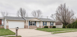 Photo of 421 Orchard Court, Troy, IL 62294 (MLS # 20017170)
