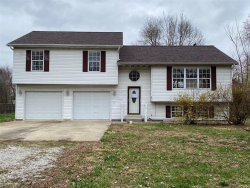 Photo of 4226 Breckenridge Lane, Granite City, IL 62040-3025 (MLS # 20018209)