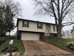 Photo of 1905 Raintree Drive, Imperial, MO 63052-1543 (MLS # 20018689)