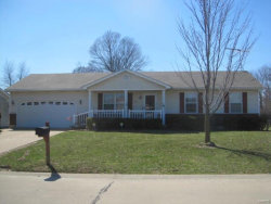 Photo of 339 Lyons Drive, Troy, MO 63379-2531 (MLS # 20018854)