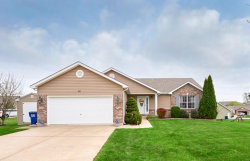 Photo of 90 Hollyhock Drive, Troy, MO 63379-3365 (MLS # 20019394)
