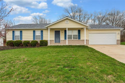 Photo of 264 Parkway Drive, Troy, MO 63379-2941 (MLS # 20019879)