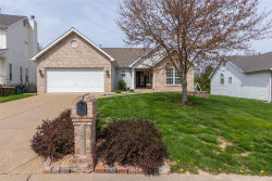 Photo of 2923 Timber Bluff Drive, High Ridge, MO 63049 (MLS # 20021829)