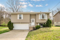 Photo of 5320 Chippendale Lane, Imperial, MO 63052-3053 (MLS # 20022033)